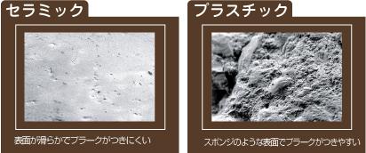 表面の拡大写真